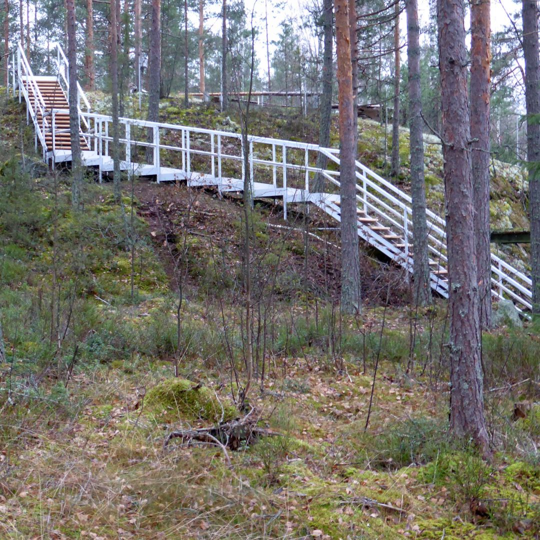Pitkät säätöportaat (ulkoportaat) metsäisellä kalliorinteellä. Välissä loiva osuus PihaAskelmia. Puu on Siperian lehtikuusta, leveys 100 cm.